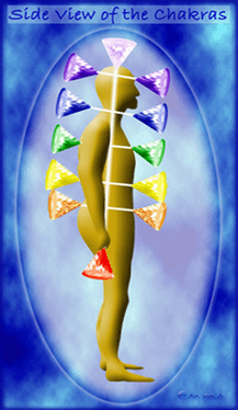 Side view of the Chakras